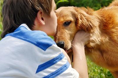 Болезни, передающиеся от животных
