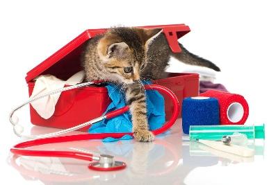 Ветеринарная аптечка для домашних животных