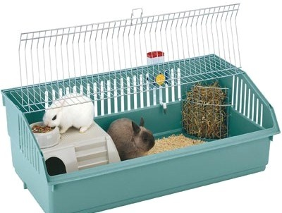 Особенности выбора и ухода за клеткой декоративного кролика