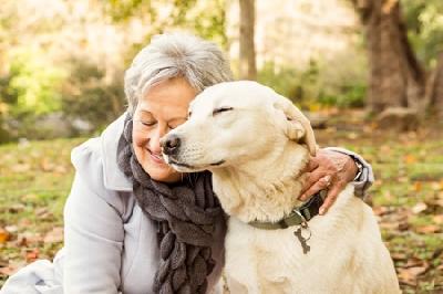 Самые подходящие породы для пожилых людей